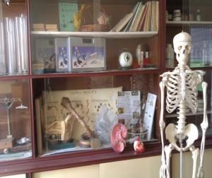 biologija-kabinet4